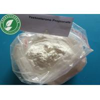 USP Standard Steroid Powder Testosterone Propionate For Fat Loss CAS 57-85-2 Manufactures