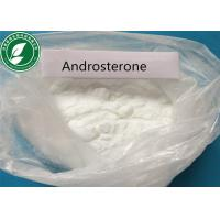 Prohormone White Steroids Powder Androsterone CAS 53-41-8 For Bodybuilding Manufactures