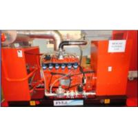 China Biogas And Natural Gas Generator Set on sale
