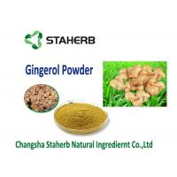 organic ginger extract Vegetable Extract Powder Food addtive water soluble dry ginger powder Manufactures