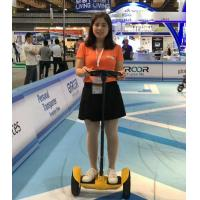 Mini Standing Self Balance Segway Electric Scooter 10 inch Tire With Handle Bar Manufactures