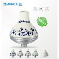 WellBlue OEM Chlorine Removal Shower Filter , Portable SPA Shower Head Filter Manufactures