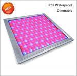 110V Led Full Spectrum Grow Lights , Led Flowering Grow Lights Energy Saving Manufactures