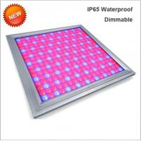 110V Led Full Spectrum Grow Lights , Led Flowering Grow Lights Energy Saving Manufactures