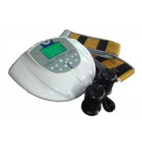 Remote IR System Dual Detox Foot Spa For Toxin Removing Manufactures