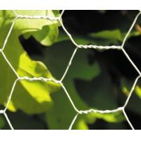 China Acid Resistance Stainless Chicken Wire For Poultry Fencing And Gabions In Roll on sale