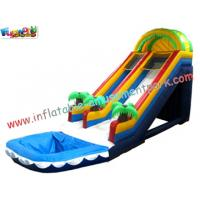 OEM Commercial Large Outdoor Inflatable Water Slides Fun Games for Kids Outside Manufactures