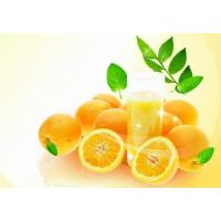 High quality Bergamot Natural Essential oil for massage 100% purity liquid Manufactures