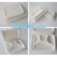 blister packaging Packaging Tray, airline fast food trays with handle, cornstarch food trays Manufactures
