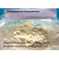 China Trenbolone Enanthate Anabolic Steroid Powder source tren ena high purity steroids white powder on sale