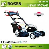 China 20 B&S Engine Self-propelled Lawn Mower (4 in 1) on sale