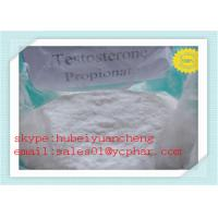 Test PRO Anabolic Steroids Testosterone Propionate for Muscle Building CAS No 57-85-2 Manufactures