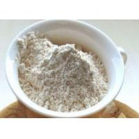 High standard dehydrated Garlic Powder in bulk best quality