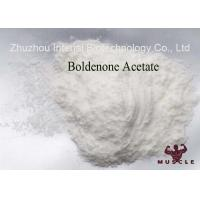 Muscle Building Steroids Boldenone Acetate 2363-59-9 Raw Pharmaceutical Material Manufactures
