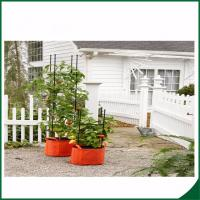 Felt Weatherproof Plant Grow Bags For Home / Garden Grow Bags For Plants 12X24 Grow bags Felt material Manufactures