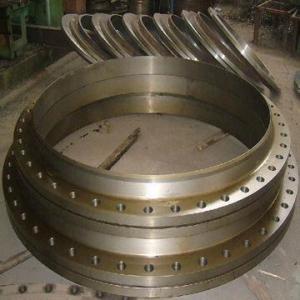 Weld Neck Flange/Carbon Flange/ASTM A105 Flange/BS4504 Flange Manufactures