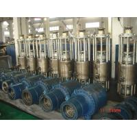 China Corrosion Resistance Heavy Duty Hydraulic Cylinder For Nuclear Power Station on sale