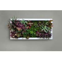 Hot Artificial Green Wall Panel Plastic Plants Wall Panel Succulent Wall Art for Sell Manufactures