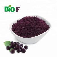 100 Pure Fruit Extract Powder / Maqui Berry Extract Powder Relieving Internal Heat Manufactures