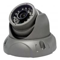 AGC , BLC 2.0 Megapixel IP Cameras With Day & Night Infrared Cut Filter Manufactures