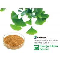 Yellow Brown Powder Natural Botanical Ginkgo Extracts With 36 Months Shelf Life Manufactures