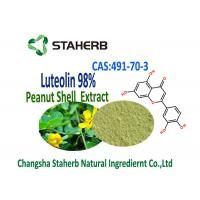 Luteolin 98% Extract From Peanuts Extract Powder 491-70-3 Herbal Plant Extract Manufactures
