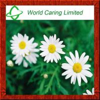 China Feverfew Extract Parthenolide 0.3%, 0.8% herbal extract  HPLC on sale