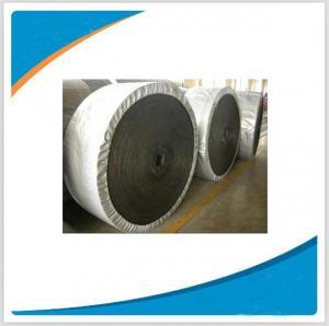 Conveyor belt /Conveyor belting / Patterned conveyor belt Manufactures
