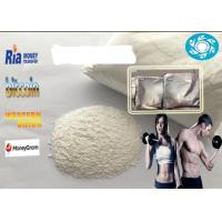 Raw Powders/Semi-Finished Oil Testosterone Sustanon250 with High Purity Manufactures