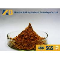 Anchovy Material Fish Meal Powder Make Animals More Healthy And Stronger Manufactures