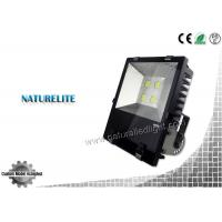 IP65 High Quality Fins Led Flood Light 200W for Buildings, Square, Landscape Lighting Manufactures