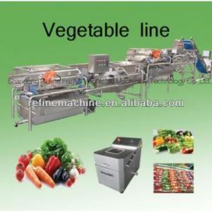 Vegetable washing machine/potato peeling machine vegetable processing line leafy vegetables Manufactures