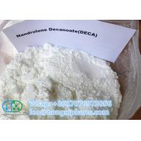 China CAS 360-70-3 Nandrolone Steroid Powder , DECA Durabolin Injection For Bodybuilding on sale