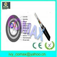 Double steel wire armored optical fiber cable GYTA33 Manufactures