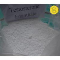 Quality Anabolic Steroide Testosterone Enanthate for sale