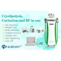 Non Surgical Vertical cryolipolysis cooling system slimming machine/cryo lipo machine