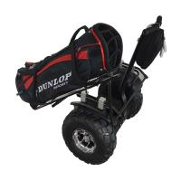 2014 Cool electric golf carts for sale Manufactures