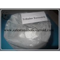 Tribulus Terrestris Powdered Extract 55056-80-9 99% For Lower Blood Pressure Manufactures