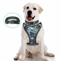 Choke Free Nylon Dog Harness No Pul Easy Control Handle With Front / Back Leash Clips Manufactures