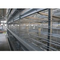 China High Efficiency Poultry Layer Cage Poultry Control Shed Farm Equipment on sale