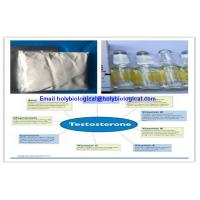 Raw Material Testosterone Steroid Hormone Prop Testosterone Propionate for Muscle Gain Manufactures