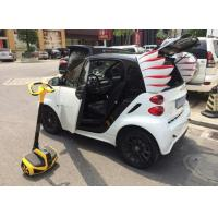 Lovely Wings for Smart Car Decoration ABS Made Auto Refitting for Smart / Car Spare Parts for sale