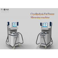 Cryolipolysis Slimming Machine For Home Use , Cryolipolysis Fat Freezing Machine Manufactures