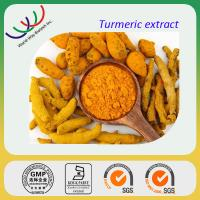GMP factory sales high quality 95% curcuminoids curcumin extract Manufactures