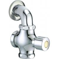 Button Self Closing Toilet Flush Valve Matching With G1 Or G3/4 Inlet For Squat Pan for sale