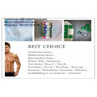 Quality Muscle Growth Testosterone Steroid Hormone Enanthate Test Enanthate Powder for sale