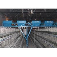 Buy cheap Automatic Poultry Farming Equipment System for Chicken from wholesalers