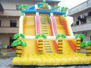 Inflatable Slide with Pool/ Inflatable Water Slide / Inflatable Water / Inflatable Toy ( LT-SL Manufactures