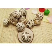China Factory Price Premium NEW CROP China Dried Shiitake White Flower Mushroom Whole on sale