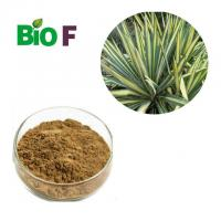 Nutritional Feed Additives Yucca Extract Powder 60% Sarsaponin Solvent Extraction Manufactures
